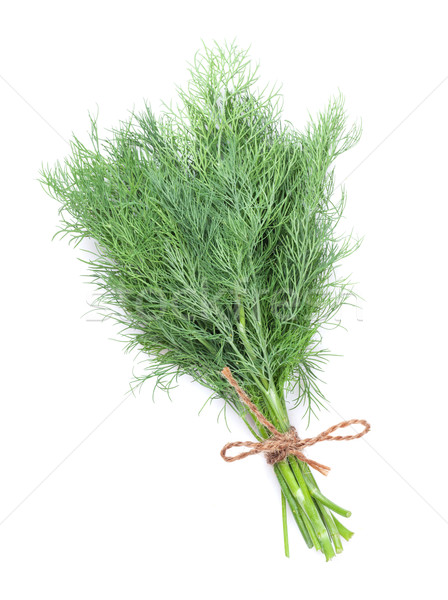 Fresh garden herbs. Dill Stock photo © karandaev