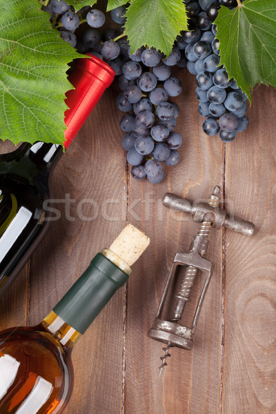 Red grape, wine bottles and corkscrew Stock photo © karandaev