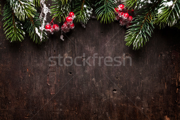 Stock photo: Christmas fir tree and holly berry