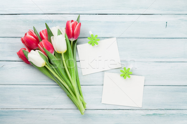 Fresh tulip flowers bouquet and photo frames Stock photo © karandaev