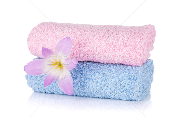 Stockfoto: Roze · Blauw · handdoeken · bloem · geïsoleerd · witte