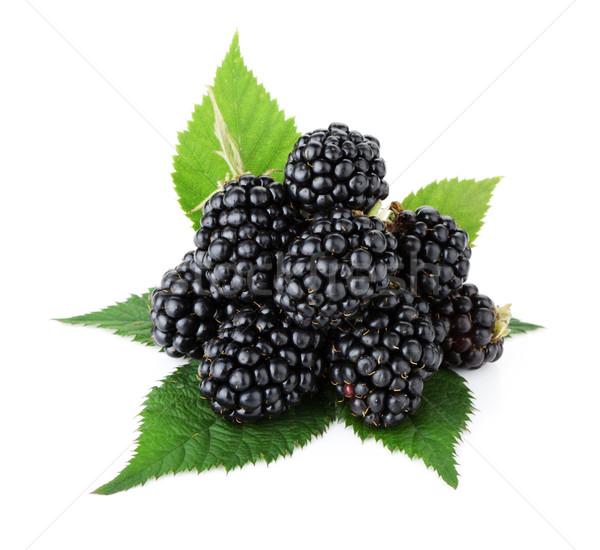 Maduro BlackBerry frutas hojas verdes aislado blanco Foto stock © karandaev