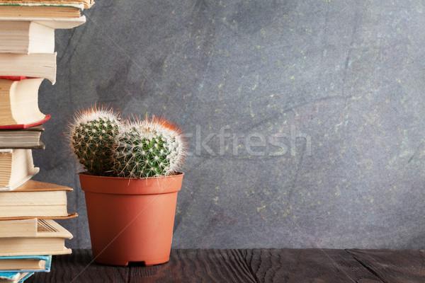 Libros cactus aula tiza bordo volver a la escuela Foto stock © karandaev