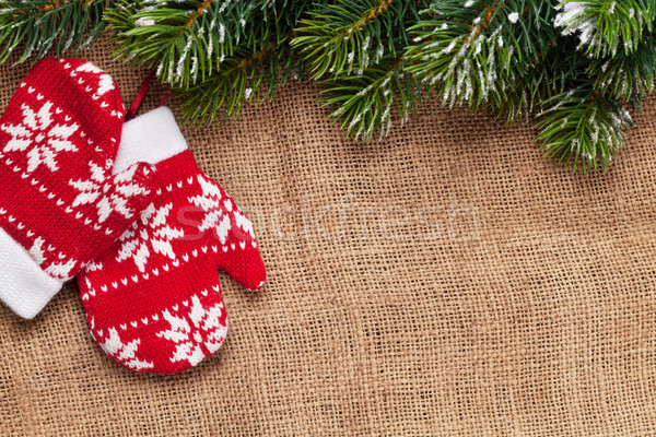 Christmas mittens decor and snow fir tree Stock photo © karandaev