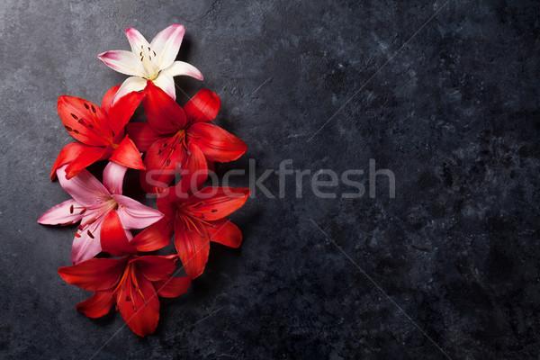 カラフル ユリ 花 暗い 石 スペース ストックフォト © karandaev