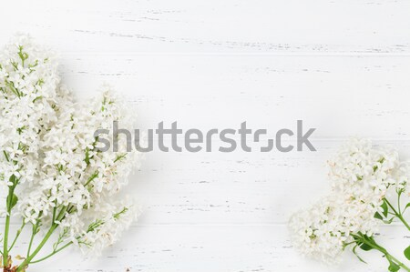 Színes orgona virágok fából készült felső kilátás Stock fotó © karandaev