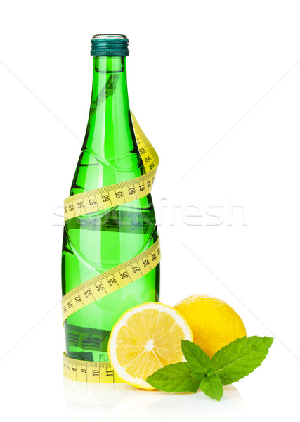 Veldfles meetlint citroen mint geïsoleerd witte Stockfoto © karandaev