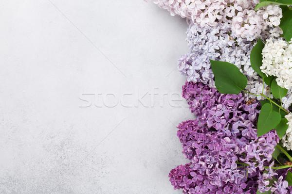 Foto stock: Colorido · lila · flores · piedra · superior · vista