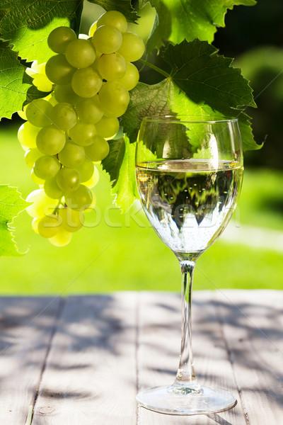 Beyaz şarap cam beyaz üzüm asma bahçe Stok fotoğraf © karandaev