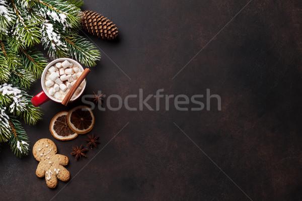 Natal chocolate quente marshmallow topo ver Foto stock © karandaev