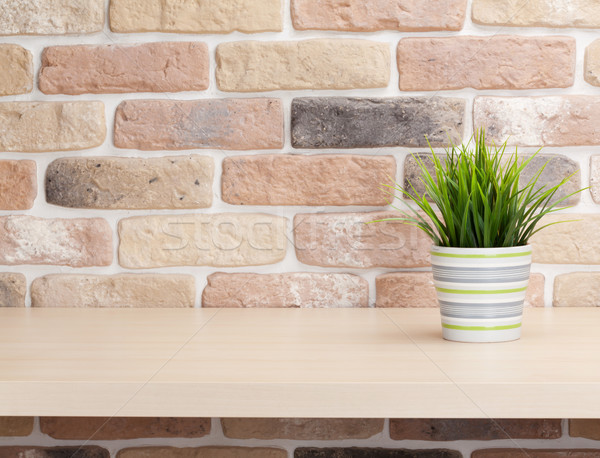 Potted plant on shelf in front of brick wall Stock photo © karandaev