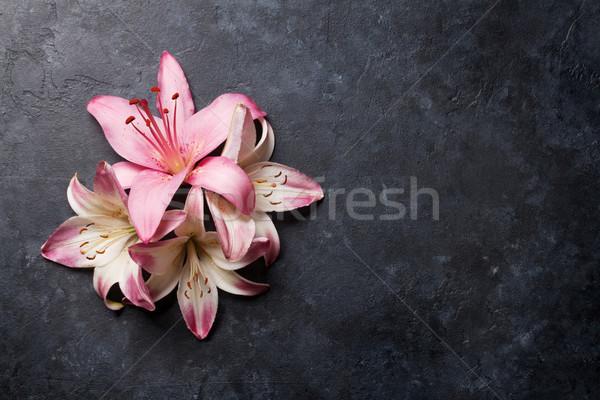 Colorido lírio flores escuro pedra espaço Foto stock © karandaev