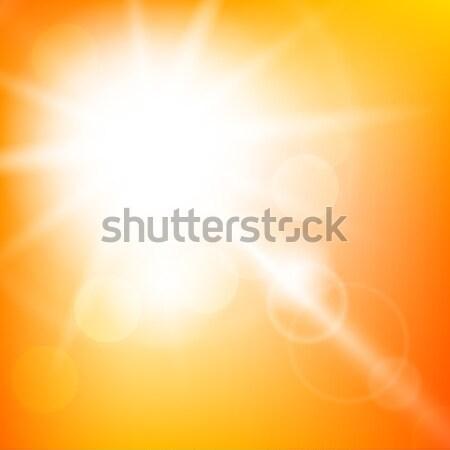 Natuur zonnige abstract zomer zon bokeh Stockfoto © karandaev