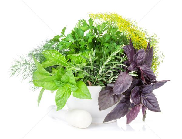 Fresh garden herbs in mortar Stock photo © karandaev