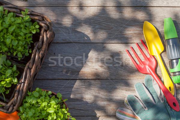 Kerti eszközök palánta kert asztal felső kilátás Stock fotó © karandaev