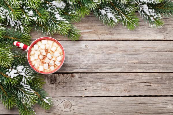 Рождества горячий шоколад проскурняк Top мнение Сток-фото © karandaev
