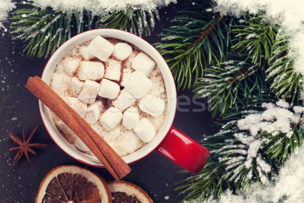 Karácsonyfa forró csokoládé mályvacukor karácsony fenyőfa felső Stock fotó © karandaev