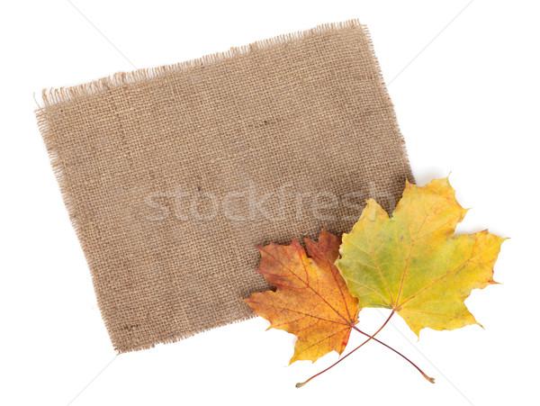 Scrap of burlap and autumn maple leaves Stock photo © karandaev