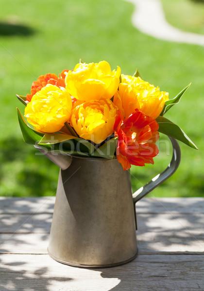 красочный тюльпаны букет лейка саду таблице Сток-фото © karandaev