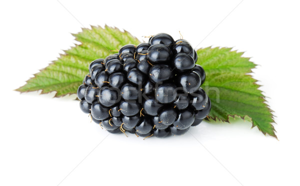 Maduro BlackBerry frutas aislado blanco alimentos Foto stock © karandaev