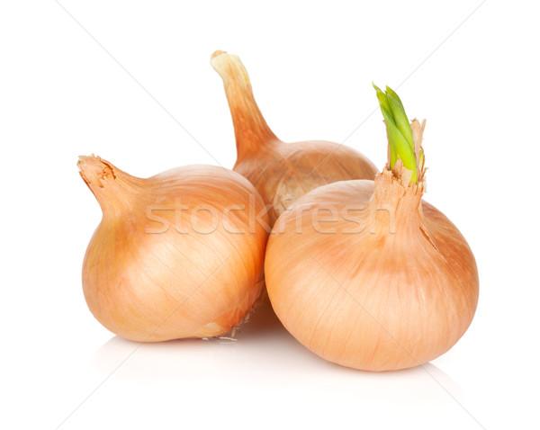 Ripe onion Stock photo © karandaev