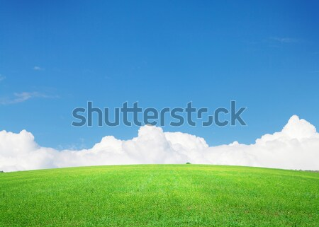 Green grass field and blue sky with clouds on horizon Stock photo © karandaev