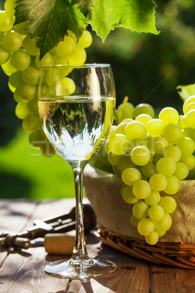 White wine glass, vine and bunch of grapes Stock photo © karandaev