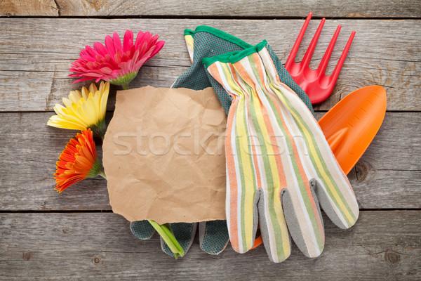 Kerti eszközök kesztyű virágok papír copy space fa asztal Stock fotó © karandaev