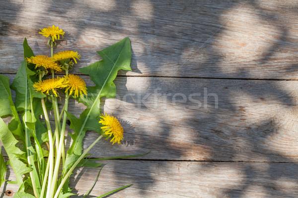 Photo stock: Pissenlit · fleurs · jardin · table · haut · vue