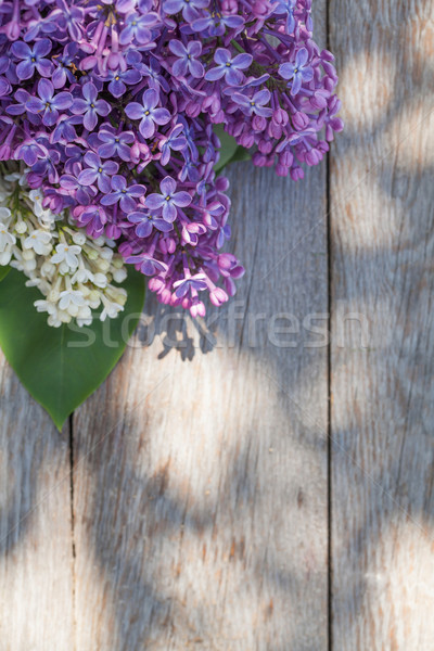 Colorful lilac flowers on garden table Stock photo © karandaev