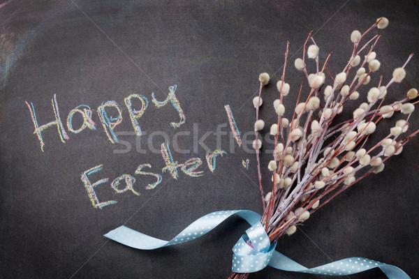 Iskolatábla kellemes húsvétot szöveg fűzfa virágok Stock fotó © karandaev