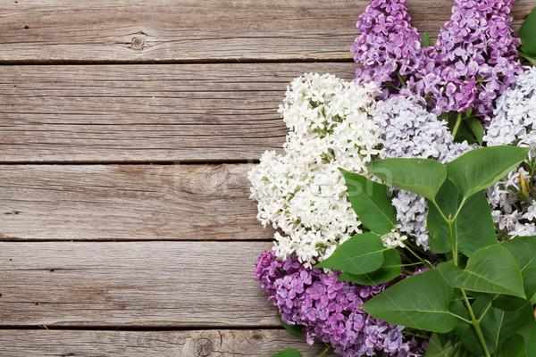 красочный сирень цветы Top мнение Сток-фото © karandaev