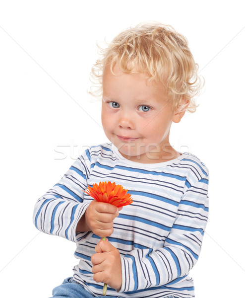 White curly hair and blue eyes baby with flower Stock photo © karandaev