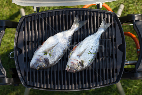 Fresh dorado fish grill cooking Stock photo © karandaev