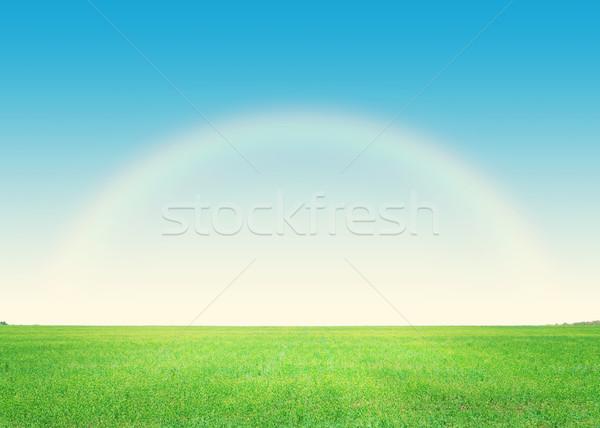Yeşil ot alan derin mavi gökyüzü gökkuşağı gökyüzü Stok fotoğraf © karandaev