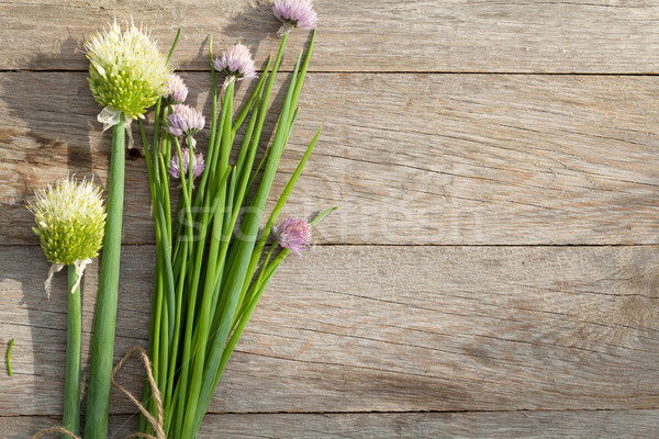 Fresh garden spring onion on garden table Stock photo © karandaev
