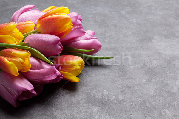 Stock photo: Fresh colorful tulip flowers