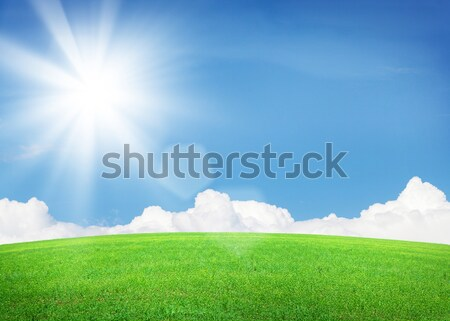 Endless green grass field and blue sky with clouds Stock photo © karandaev