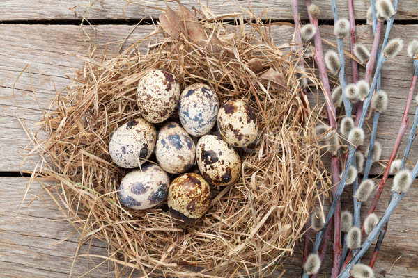 Yumurta yuva rustik ahşap doğa arka plan Stok fotoğraf © karandaev