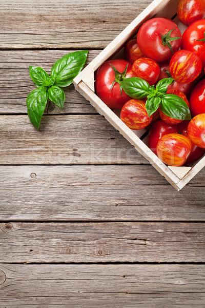 Taze olgun bahçe domates fesleğen ahşap masa Stok fotoğraf © karandaev