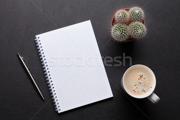 Biuro skóry biurko tabeli notatnika Kaktus Zdjęcia stock © karandaev