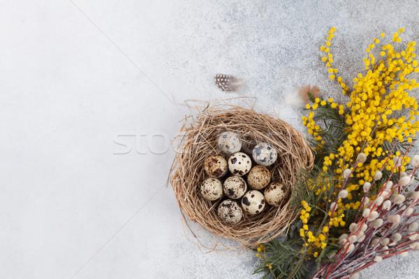 卵 巣 黄色の花 イースター グリーティングカード 先頭 ストックフォト © karandaev