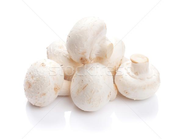 Champignon mantar yalıtılmış beyaz stüdyo sebze Stok fotoğraf © karandaev