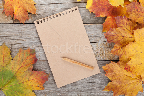 Blank page and colorful autumn maple leaves Stock photo © karandaev