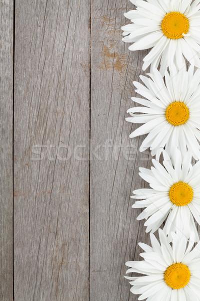 Gänseblümchen Kamille Blumen Holz Holztisch Kopie Raum Stock foto © karandaev