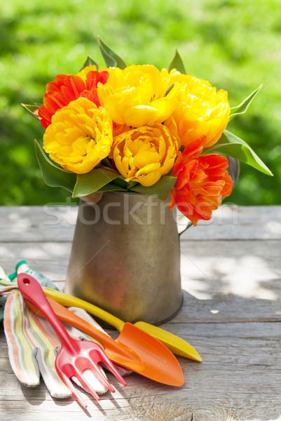 Stockfoto: Kleurrijk · tulpen · tuin · tools · zonnige · voorjaar