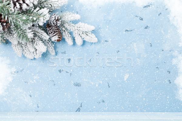 Karácsony fenyőfa hó kilátás copy space textúra Stock fotó © karandaev
