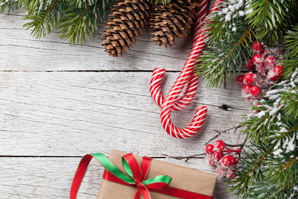 Christmas gift box, candy cane and fir tree Stock photo © karandaev