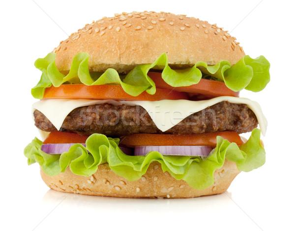 свежие Burger изолированный белый мяса цвета Сток-фото © karandaev
