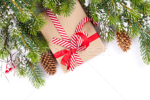 Weihnachtsbaum Zweig Schnee Geschenkbox isoliert weiß Stock foto © karandaev